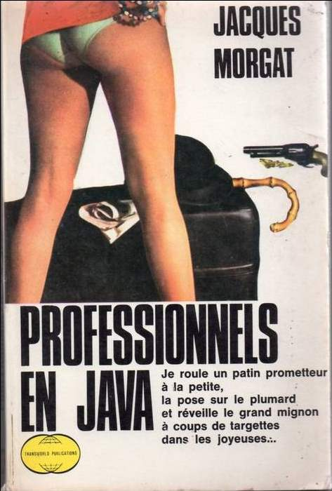 Professionnels en java