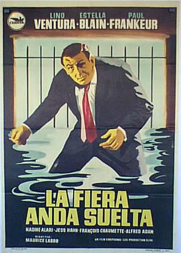 Affiche espagnole Le fauve est lâché 70 sur 100 cm